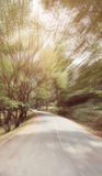Abstract curve asphalt road with tree sideway in forest. Royalty Free Stock Photos