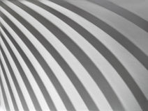 Abstract curve silver color on background texture. Royalty Free Stock Images