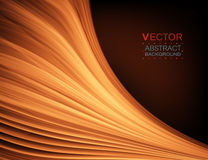 Abstract curve. Smooth silk texture. Vector background. Stock Photography