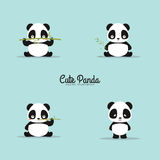 Abstract cute pandas Stock Image
