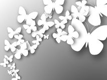 Abstract 3D white paper butterflies. Abstract 3D white paper butterflies on gray. Cut-out from paper. Vector illustration Stock Photography