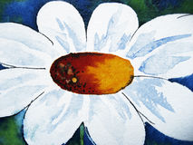 Abstract daisy. Watercolour painting with ink drawn elements, created by the photographer Royalty Free Stock Photo