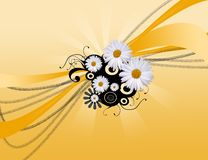 Abstract daisy background Stock Photos