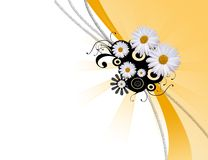 Abstract daisy background Stock Image
