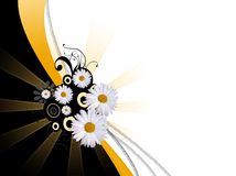 Abstract daisy background Stock Photography