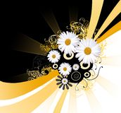 Abstract daisy background Stock Images