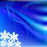 Abstract daisy background Royalty Free Stock Image