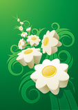 Abstract daisy background. Stock Images
