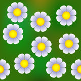 Abstract daisy semaless pattern Royalty Free Stock Photography