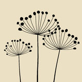 Abstract Dandalions background. Floral Elements for design, dandelions. EPS10 Vector illustration Royalty Free Stock Image