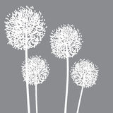 Abstract Dandalions background. Floral Elements for design, dandelions. EPS10 Vector illustration Stock Photo