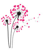 Abstract Dandelion Background Vector Illustration Royalty Free Stock Images