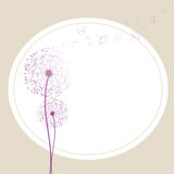 Abstract dandelion in the wind. Wallpaper Royalty Free Stock Photos
