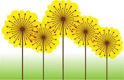 Abstract dandelions silhouettes background Stock Photos