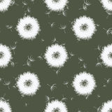 Abstract dandelions, vector seamless pattern Royalty Free Stock Photo