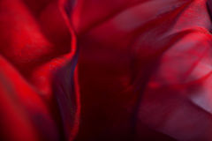 Abstract dark red fabric background Stock Photos
