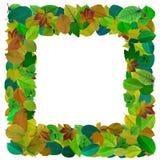 Abstract de fotokader van het bladerenmozaïek Stock Foto's
