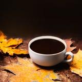 Abstract de herfstconcept - gele en rode de herfstbladeren en kop o Stock Fotografie