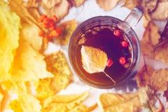 Abstract de herfstconcept - gele en rode de herfstbladeren en kop van zwarte koffie Royalty-vrije Stock Afbeeldingen