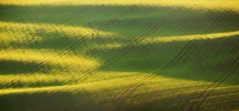 Abstract de lentelandschap met groene gebieden bij kleurrijke zonsondergang Stock Fotografie