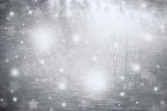 Abstract de winterbos met sneeuwval en sterren Stock Foto's