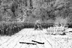 Abstract de winterlandschap Stock Foto's