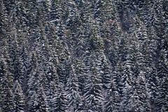 Abstract de winterlandschap Royalty-vrije Stock Afbeeldingen