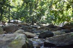 Abstract de zomerlandschap voor uw ontwerp Royalty-vrije Stock Foto's
