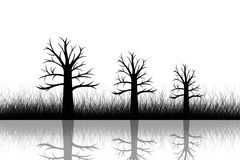 Abstract dead trees. And grass closeup Royalty Free Stock Photos