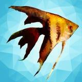 Abstract decorative fish Stock Photo