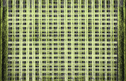 Abstract decorative lattice texture background horizontal, grid Intricately carved windows, crossing lines yellow oirange violet r Royalty Free Stock Photo