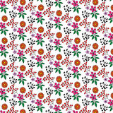 Abstract decorative pattern Royalty Free Stock Photography