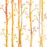 Abstract decorative trees. Autumn forest. Decorative alley. Seamless pattern. Abstract decorative trees. Autumn forest. Decorative alley. Shrubbery on vector illustration
