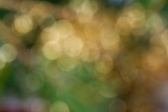 Abstract defocused background. Abstract defocused green and yellow background Royalty Free Stock Image