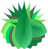 Leaf Design. An abstract design art is illustrated with green leaf layers as theme Stock Images