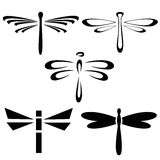Abstract design dragonfly Royalty Free Stock Photography
