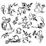 Abstract design elements. Abstract ornament illustration with floral design elements, vector Royalty Free Stock Photos