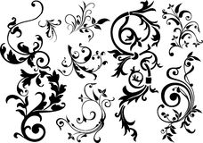 Abstract design elements. Abstract ornament, illustration with floral design elements, vector Stock Photography