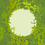 Abstract design with green leaf silhouette card for your text in circle. Vector. Illustration Royalty Free Stock Photo