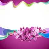 Abstract design with lilac flowers. Vector background for design with flowers of lilac and abstraction Royalty Free Stock Photos