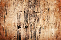 Rotten wood Royalty Free Stock Photography