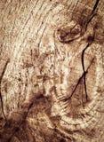 Abstract detail eiken oud hout Royalty-vrije Stock Afbeeldingen