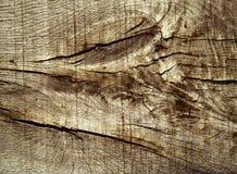 Abstract detail van eiken plank Royalty-vrije Stock Afbeeldingen