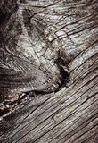 Abstract detail van oud droog hout Royalty-vrije Stock Foto
