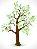 Abstract detailed eco tree Royalty Free Stock Photos