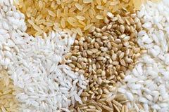 Abstract die patroon van witte, bruine en geblancheerde rijst van ab wordt gemaakt Royalty-vrije Stock Afbeeldingen