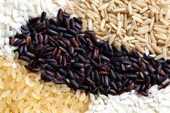Abstract die patroon van zwarte, witte, bruine en geblancheerde rijst wordt gemaakt Royalty-vrije Stock Afbeeldingen
