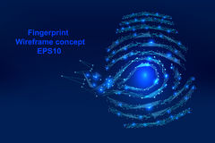 Abstract  Digital-fingerprint with points, lines, and shapes in the form  wireframe Stock Photos
