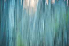 Abstract digital painting of a thick and heavy wooded forest at Royalty Free Stock Photos