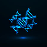 Abstract DNA. Neon molecular structure. Vector illustration. Eps 10 Stock Photo